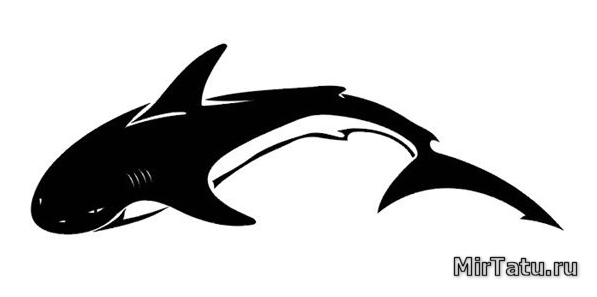 Эскизы татуировок — Акула