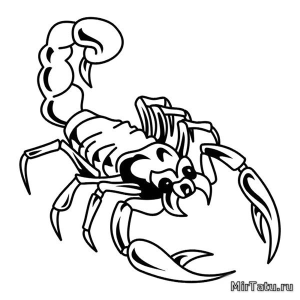 Эскизы татуировок скорпион 14