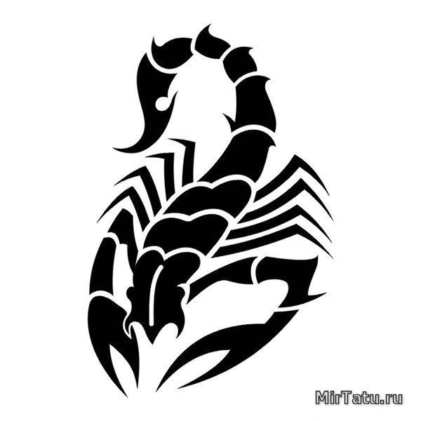 151 эскизы татуировок скорпион 15