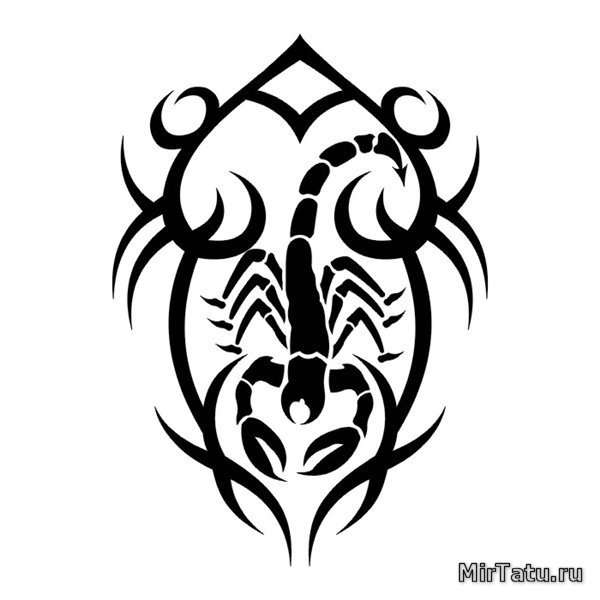 Эскизы татуировок — Скорпион 18