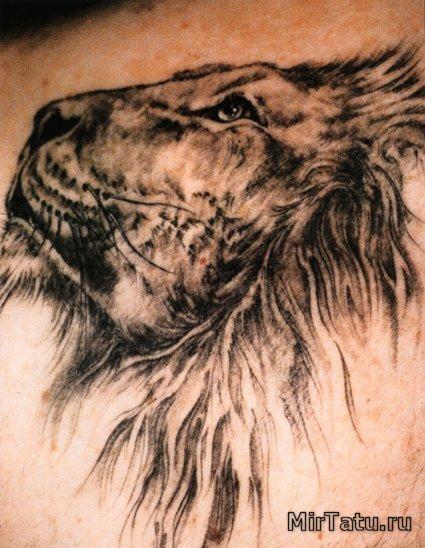 Фото татуировок - Лев