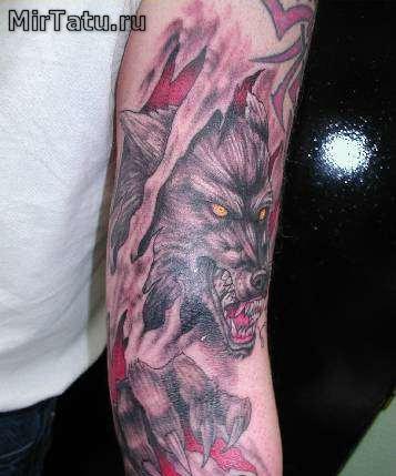 Фото татуировок — Волк 3