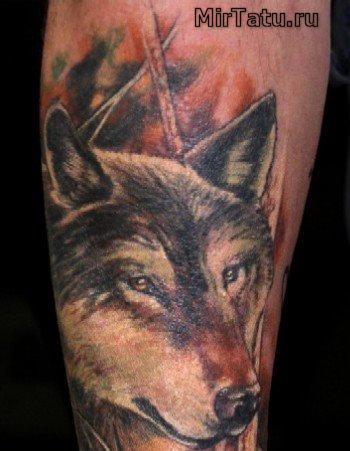 Фото татуировок — Волк 4